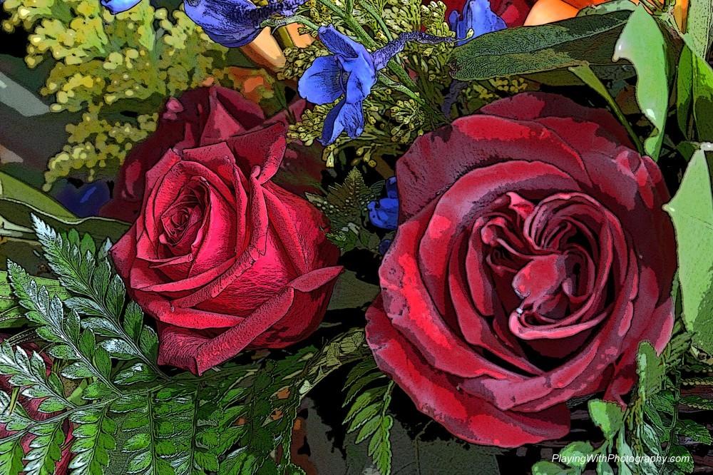 20140523-DSC_6591 posterized roses