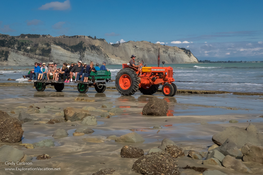 Gannet Beach Adventures at Cape Kidnappers - Cindy Carlsson