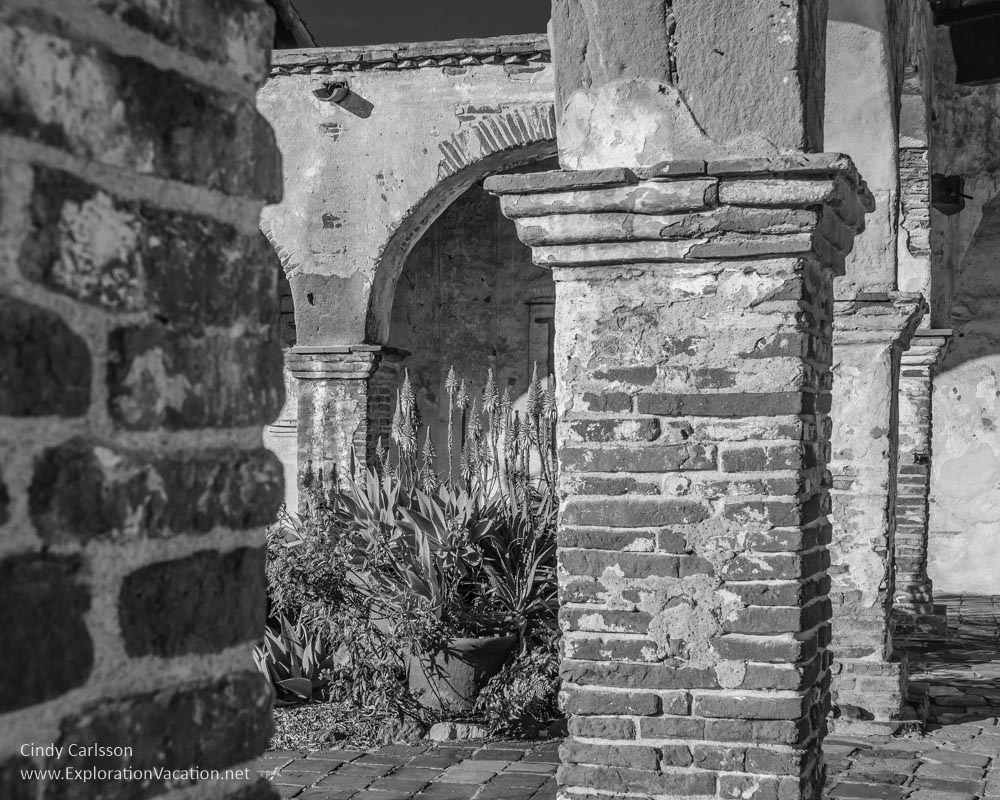 Secret garden San Juan Capistrano - Cindy Carlsson